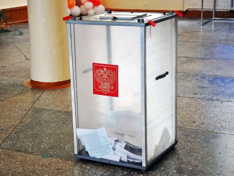 Президент РФ даст право голосовать на выборах всем, кто под домашним арестом