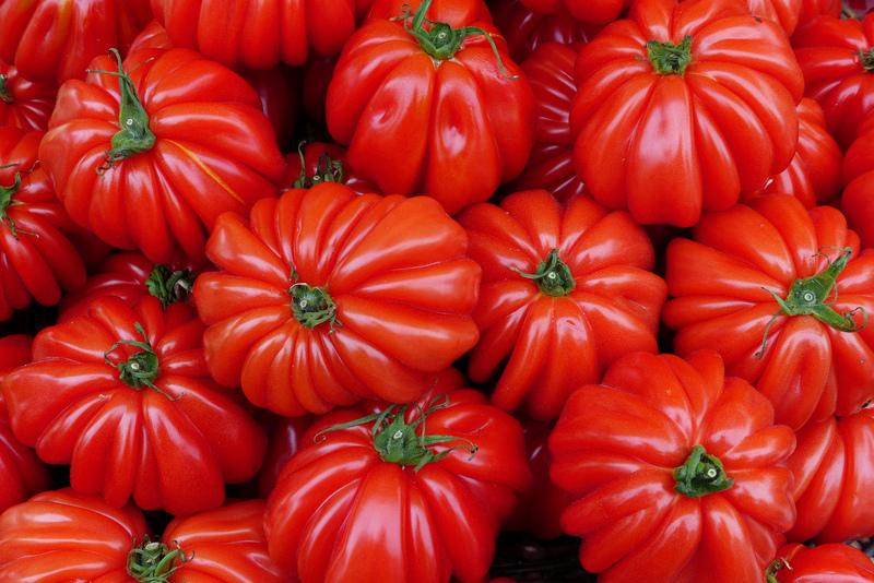 Семена растений с генетическими изменениями нельзя использовать для посевов