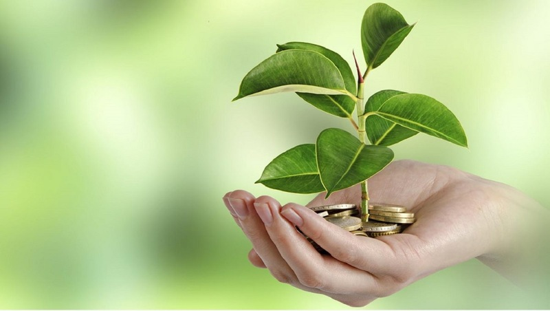 Экология налоги