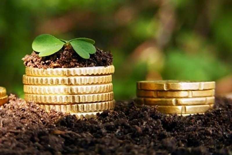 Земельный налог и участок без кадастровой стоимости: что делать?