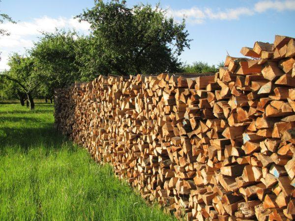 Бизнес по сбыту дров
