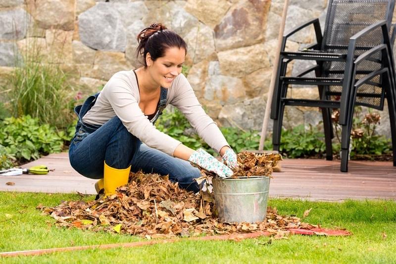 Сезонные работы по хозяйству